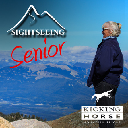 KH-summer-icon-SIGHT-senior
