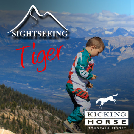 KH-summer-icon-SIGHT-tiger