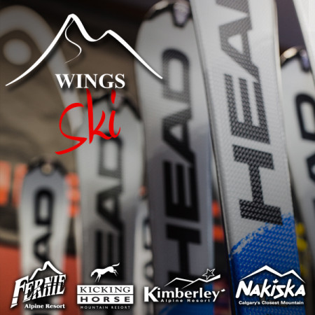 wings-SKI-ICON